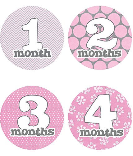 baby-girl-monthly-stickers-new-12-months-just-born-gray-pink-white-4-circle