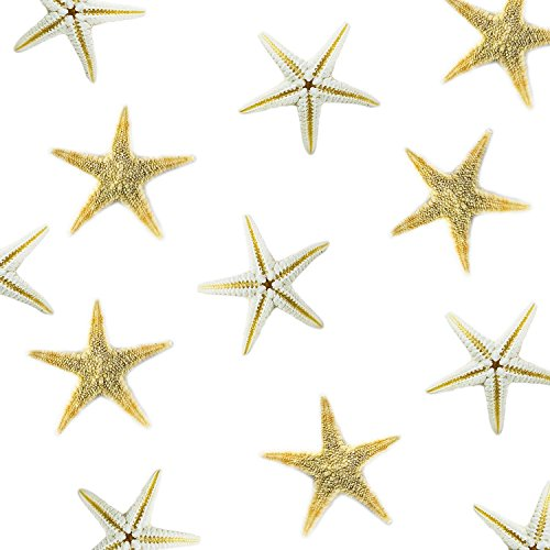Tiny Miniature Fairy Garden Beach Critter Starfish Marine Life Collection for Arts & Crafts Projects, Decorations, Party Favors, Invitations (90 Pieces) by Super Z Outlet®