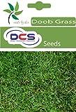 DCS Doob Grass Seeds (Pack Of 1 Grams)