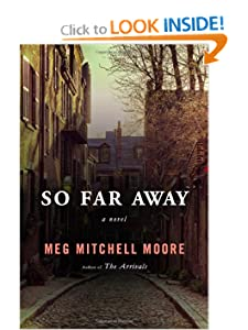 A Novel  - Meg Mitchell Moore