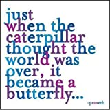 Just When the Caterpillar Journal