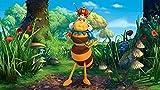 Image de Maya l'abeille - Coffret: Mille et un miels!