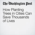 How Planting Trees in Cities Can Save Thousands of Lives | Chelsea Harvey