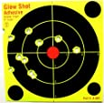 "60 Pack - 6"" Reactive Splatter Targets - Glowshot - Gun and Rifle Targets"