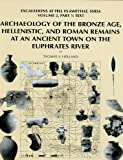 img - for Archaeology of the Bronze Age, Hellenistic, and Roman Remains at an Ancient Town on the Euphrates River: Excavations at Tell Es-Sweyhat, Syria Volume ... Institute of the University of Chicago) book / textbook / text book