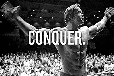 CONQUER ARNOLD SCHWARZENEGGER Motivational Art Silk Wall Poster Large Bodybuilding Pictures For Wall - 32x48 inch (80x120cm)