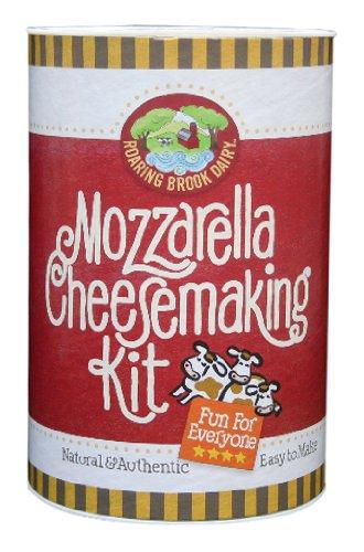 Mozzarella Cheesemaking Kit