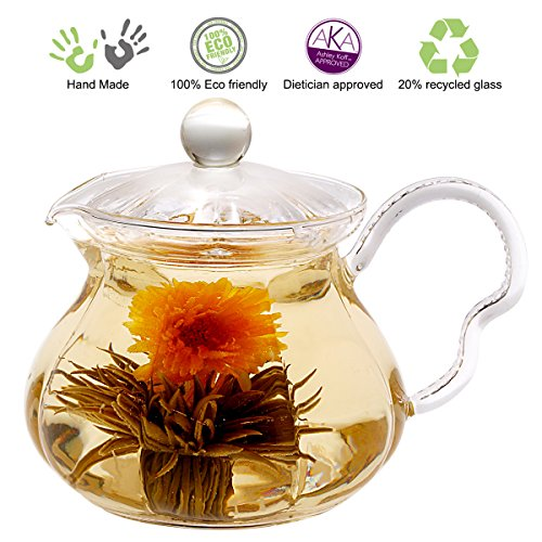 Tea Beyond GTP2005 Heat Resistant Glass Teapot Fairy, 20-Ounce (Flower Tea Kettle compare prices)