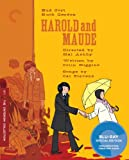 51IRd 42XXL. SL160  Harold and Maude (The Criterion Collection) [Blu ray]