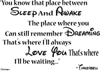Tinkerbell Wall Decals-You know that place between sleep and awake The place where you can still remember dreaming That's where I'll always love you That's where I'll be waiting- Wall Quotes- Disney Wall Sayings from Global Sign Images, Inc