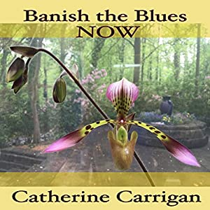 Banish the Blues Now Audiobook