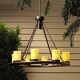 Kichler 15402OZ, Oak Trail Low Volt Solid Brass Hanging Lights Landscape Deck Lighting Xenon, Olde B