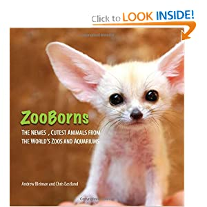 ZooBorns Andrew Bleiman and Chris Eastland