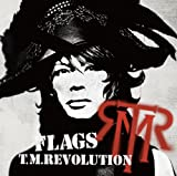 The party must go on-T.M.Revolution