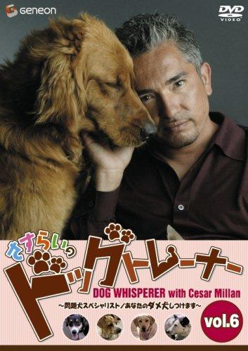 さすらいのドッグトレーナー Vol.6~問題犬スペシャリスト/あなたのダメ犬しつけます~ [DVD]
