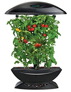 AeroGarden Extra (Black) with Mega Cherry Tomato Seed Kit (Discontinued by Manufacturer)