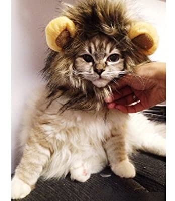 Dogloveit Pet Costume Lion Mane Wig for Dog Cat Halloween Dress up with Ears