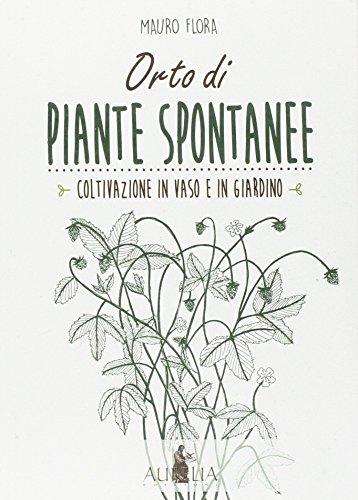Orto di piante spontanee. Coltivazione in vaso e in giardino