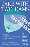 img - for The Lake With Two Dams: What You Should Know About Mental Illness book / textbook / text book