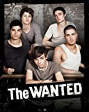MPP50370 The Wanted 40cm x 50cm mini poster