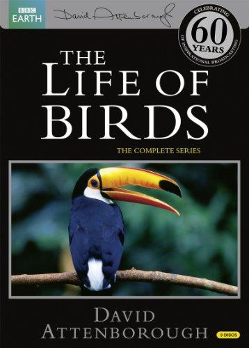 BBC The Life of Birds -鳥の世界- DVD-BOX (10エピソード, 489分) BBC EARTH ライフシリーズ [DVD] [Import] [PAL, 再生環境をご確認ください]