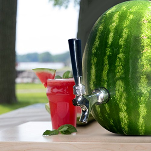 Blazin' Tap - Premium Watermelon Tap Kit - Pumpkin Fruit Ice Tea Drink Dispenser (Spigot Watermelon compare prices)