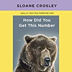 How Did You Get This Number | Sloane Crosley