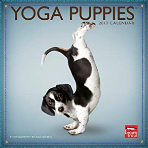 Yoga Puppies 2013 Mini 7x7 Browntrout Publishers