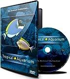 Aquarium DVD -Tropical Aquarium 2 Hours of Award Wining Fish Tanks