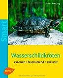Wasserschildkröten: Exotisch, faszinierend, exklusiv