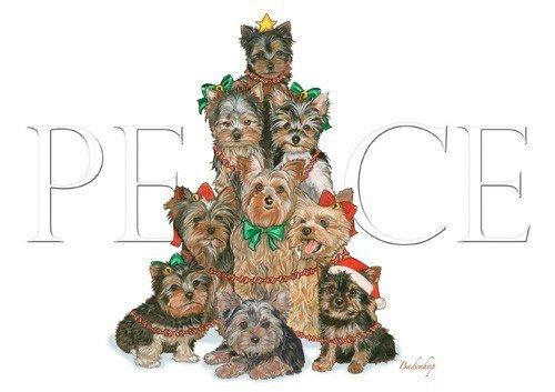 Holiday Boxed Cards- Yorkshire Terriers