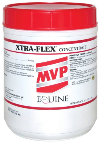 Xtra-Flex 8 Oz