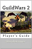 GuildWars 2: A New Player's Guide