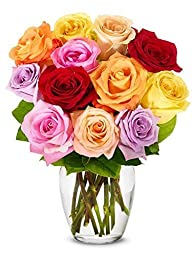 FROM YOU FLOWERS - One Dozen Long Stemmed Rainbow Roses (Free Vase Included)