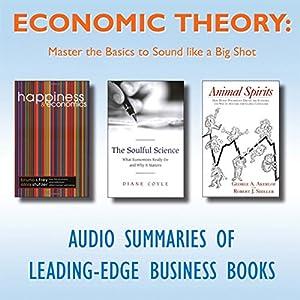 Economic Theory Audiobook