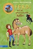 Ferdi 01: Ferdi - und der geheimnisvolle Reiter - Hilke Rosenboom