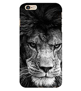 FEROCIOUS LION Designer Back Case Cover for Apple iPhone 5C