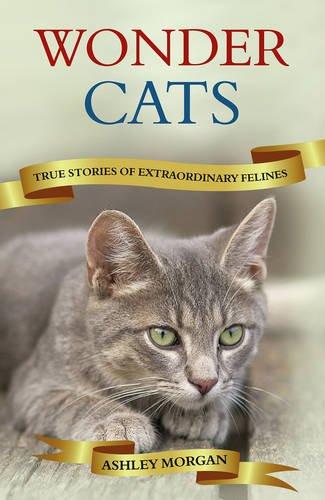 Wonder Cats: True Tales of Extraordinary Felines