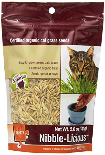 petlinks-nibble-licious-cat-grass-seeds-5-oz