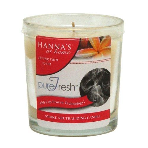 Hanna's At Home PureFresh Odor Neutralizing 4oz Candle: Smoke