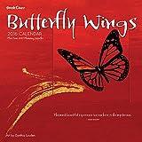 2016 Butterfly Wings Wall Calendar
