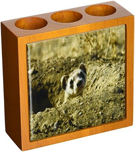 Rikki Knight Black Footed Ferret Design Inch Tile Wooden Tile Pen Holder