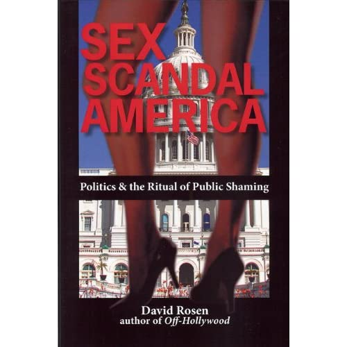 Sex Scandal America Book