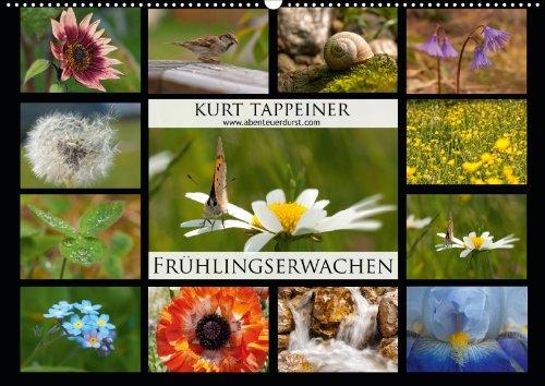 fruhlingserwachen-wandkalender-2013-din-a2-quer-fruhling-in-sudtirol-monatskalender-14-seiten
