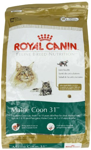 Detail image Royal Canin Dry Cat Food, Maine Coon 31 Formula, 6-Pound Bag