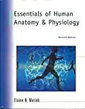 Essentials of Human Anatomy and Physiology Elaine Marieb