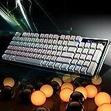 ARINOゲーミングキーボード/USB有線メカニカル ゲームキーボード+マルチライティング アンチゴースティング対応 LEDバックライト付き 複数同時押し対応 英語92キー配列 ⻘軸 ゲームに最適Windows XP/VISTA/Win7/Win8/Win10/Mac/など対応 REICAT--RX3(ホワイト)