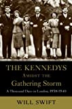 img - for The Kennedys Amidst the Gathering Storm book / textbook / text book