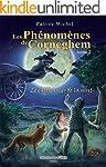 Les ph�nom�nes de Corneghem : Le chif...