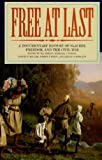 img - for Free at Last: A Documentary History of Slavery, Freedom, and the Civil War book / textbook / text book